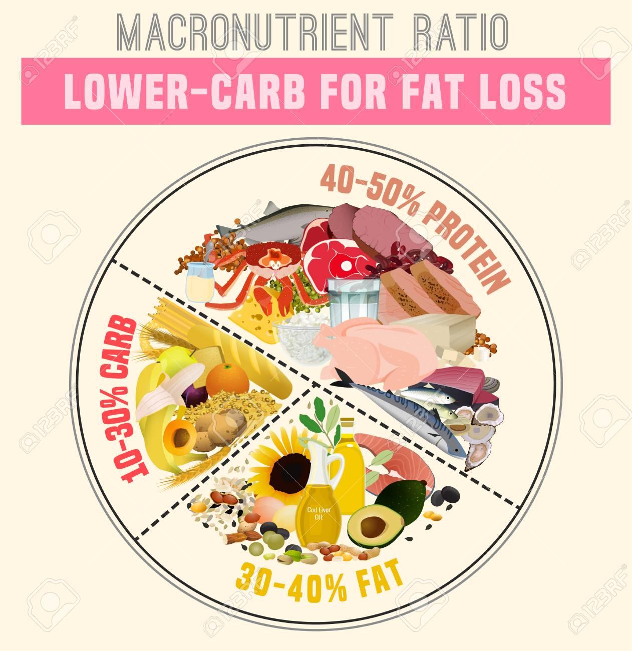 Low Carbohydrate Diet Diagram Macronutrient Ratio Poster Fat