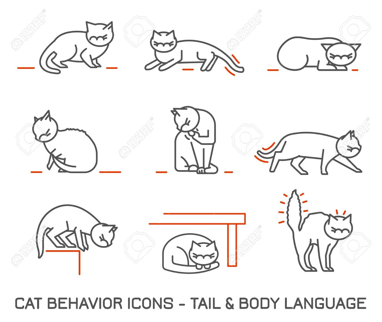 Cat fearful behavior signals set. Domestic animal or pet body language. Fear and anxiety. I am terrified. Kitty reaction. Simple icon, symbol, sign. Editable vector illustration on a white background - 136110084