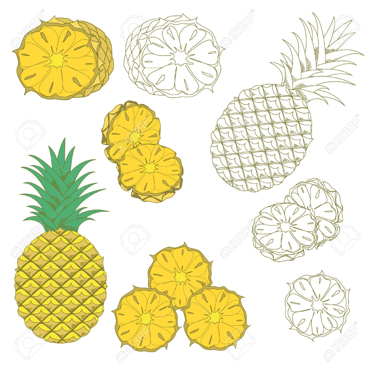 pineapple slice clipart. set of colored and hand drawn pineapples on the white background. isolated icon. stock pineapple slice clipart