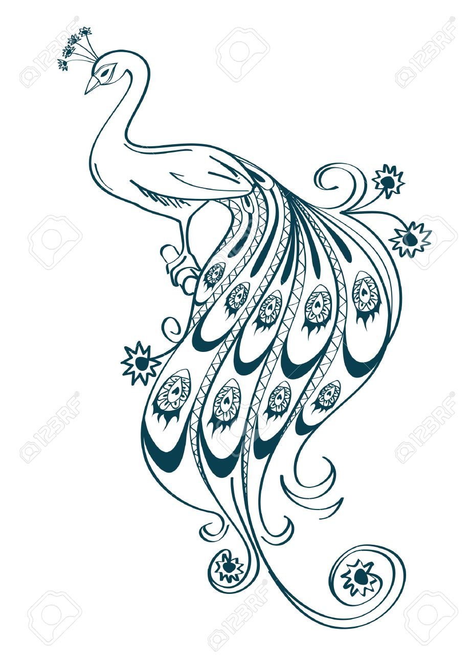 Illustration with isolated outline stylized ornamental peacock on white background Stock Vector - 23504038