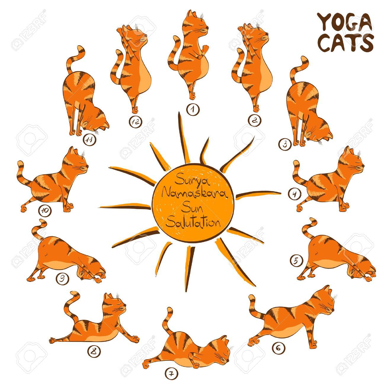 Resultado de imaxes para saludo al sol yoga cats