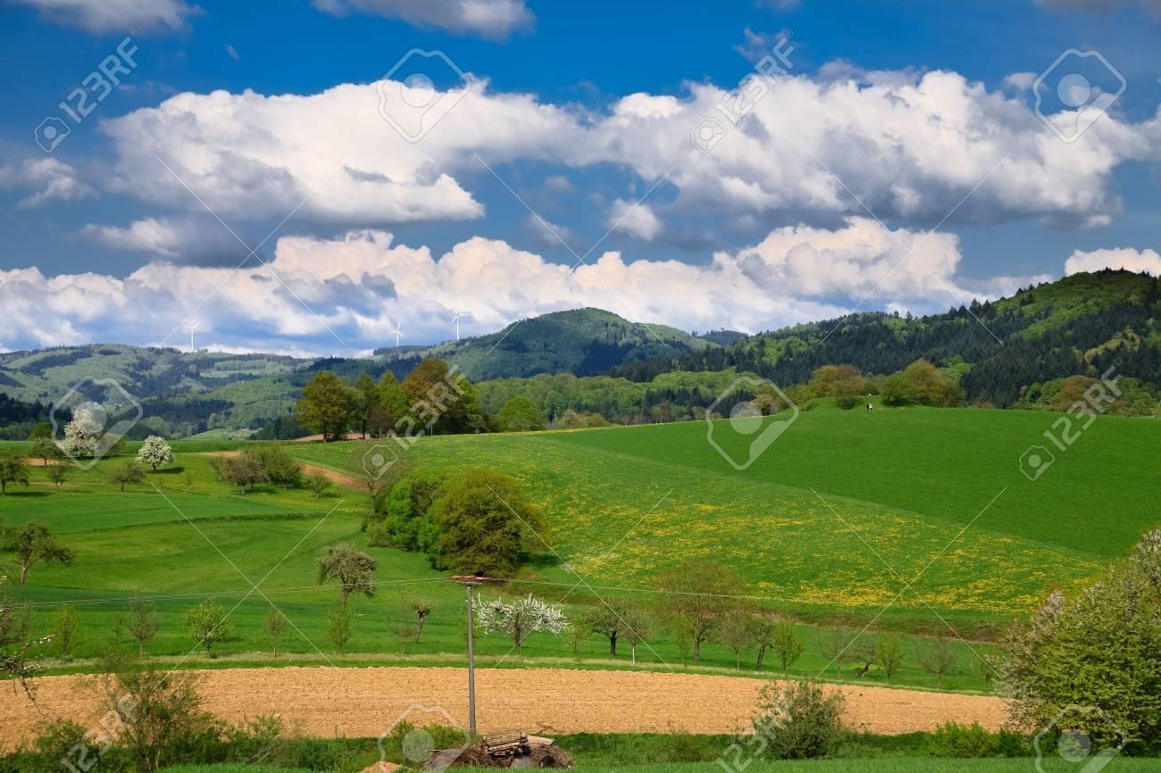 Spring landscape - green fields, the blue sky Stock Photo - 5484279