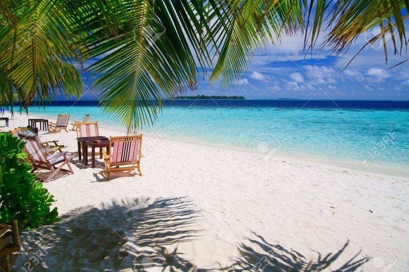 Relaxing on tropical paradise with white sand at Maldives and green palms with blue sky Stock Photo - 5742388