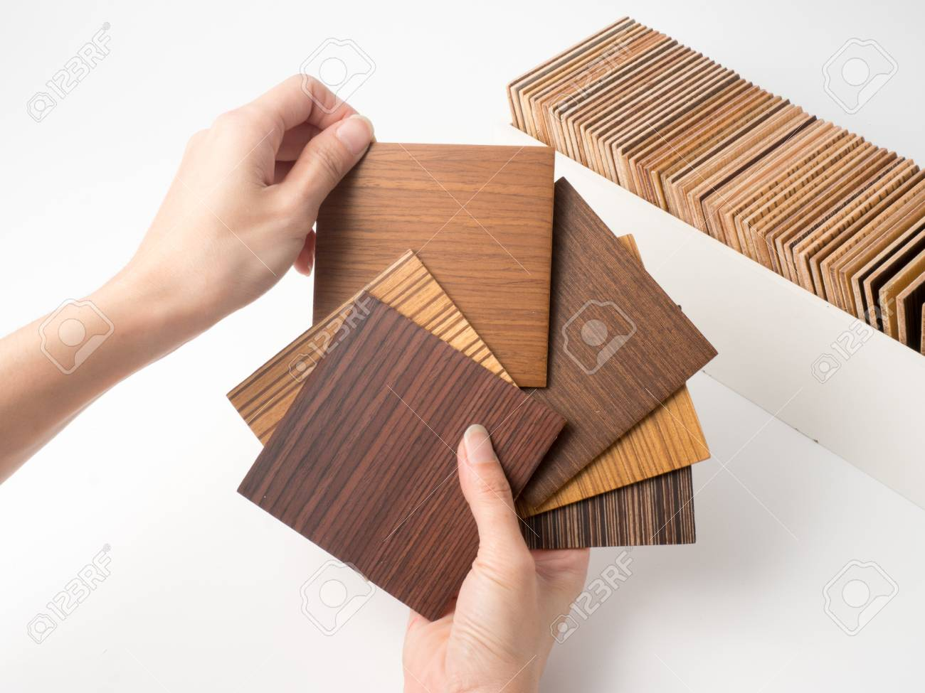 Samples Of Veneer Wood On White Background. Interior Design Select Material  For Idea.Hand