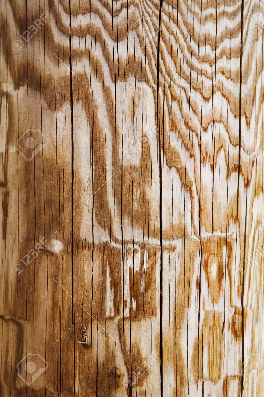 Holzbrett Bohlen Zaun Mit Linien Knicke Kurven Textur Hintergrund