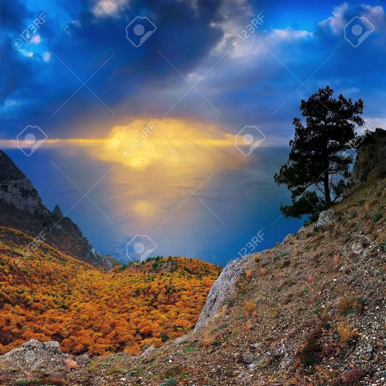 sun beams on a sea Stock Photo - 555971