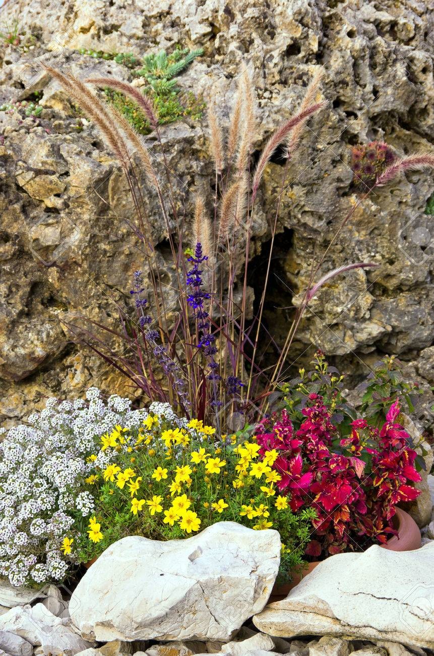 Petit jardin de rocaille, jardin de rocaille ou jardin alpin appelés aussi.