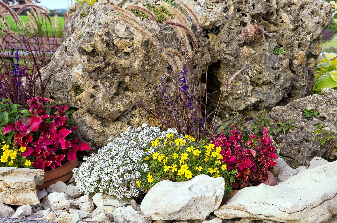 Pleasant Small Rock Garden Rockery Or Alpine Garden Stock Photo Picture  With Likable Small Rock Garden Rockery Or Alpine Garden Stock Photo   With Delightful Garden Sheds Oxford Also Wooden Garden Summerhouses In Addition Covent Garden Vintage Shops And Small Vegetable Garden Design Pictures As Well As Trees In The Garden Additionally Garden Wall Plaques Uk From Rfcom With   Likable Small Rock Garden Rockery Or Alpine Garden Stock Photo Picture  With Delightful Small Rock Garden Rockery Or Alpine Garden Stock Photo   And Pleasant Garden Sheds Oxford Also Wooden Garden Summerhouses In Addition Covent Garden Vintage Shops From Rfcom