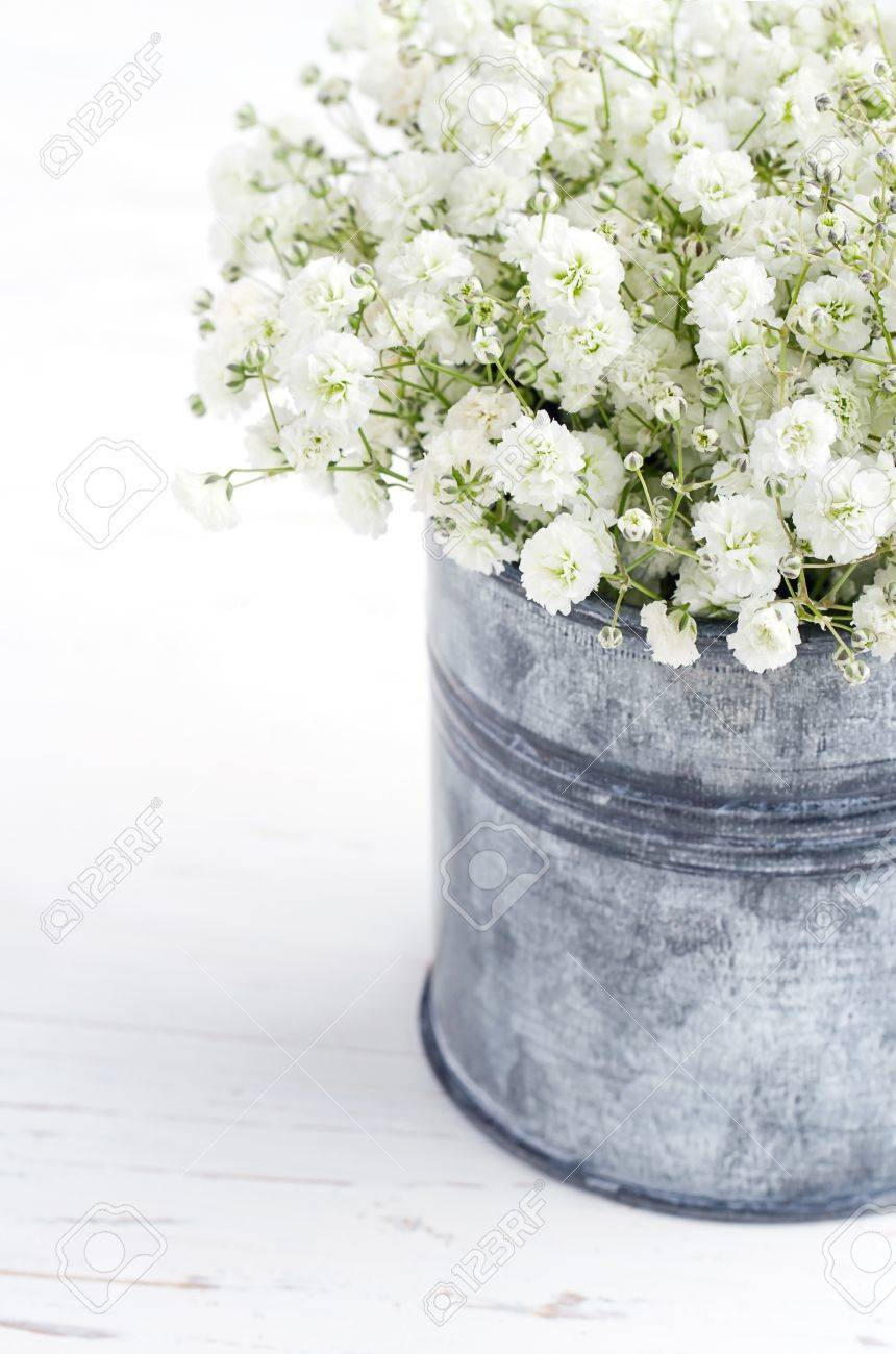 Bouquet of white gypsophila babys breath flowers on wooden bouquet of white gypsophila babys breath flowers on wooden background stock photo 18227029 mightylinksfo