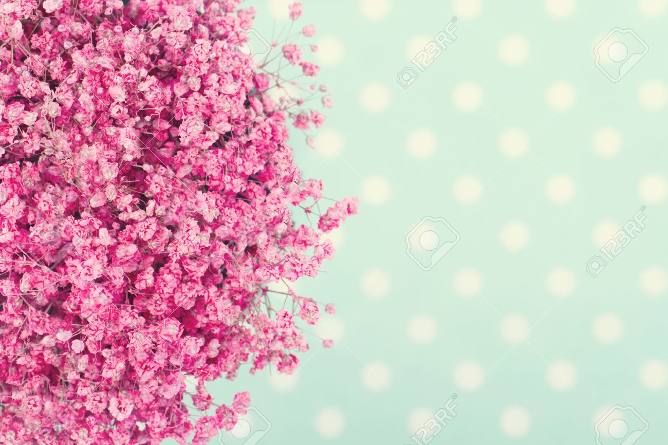 Bouquet of pink babys flowers on turquoise dotted background with vintage editing stock photo 19979205