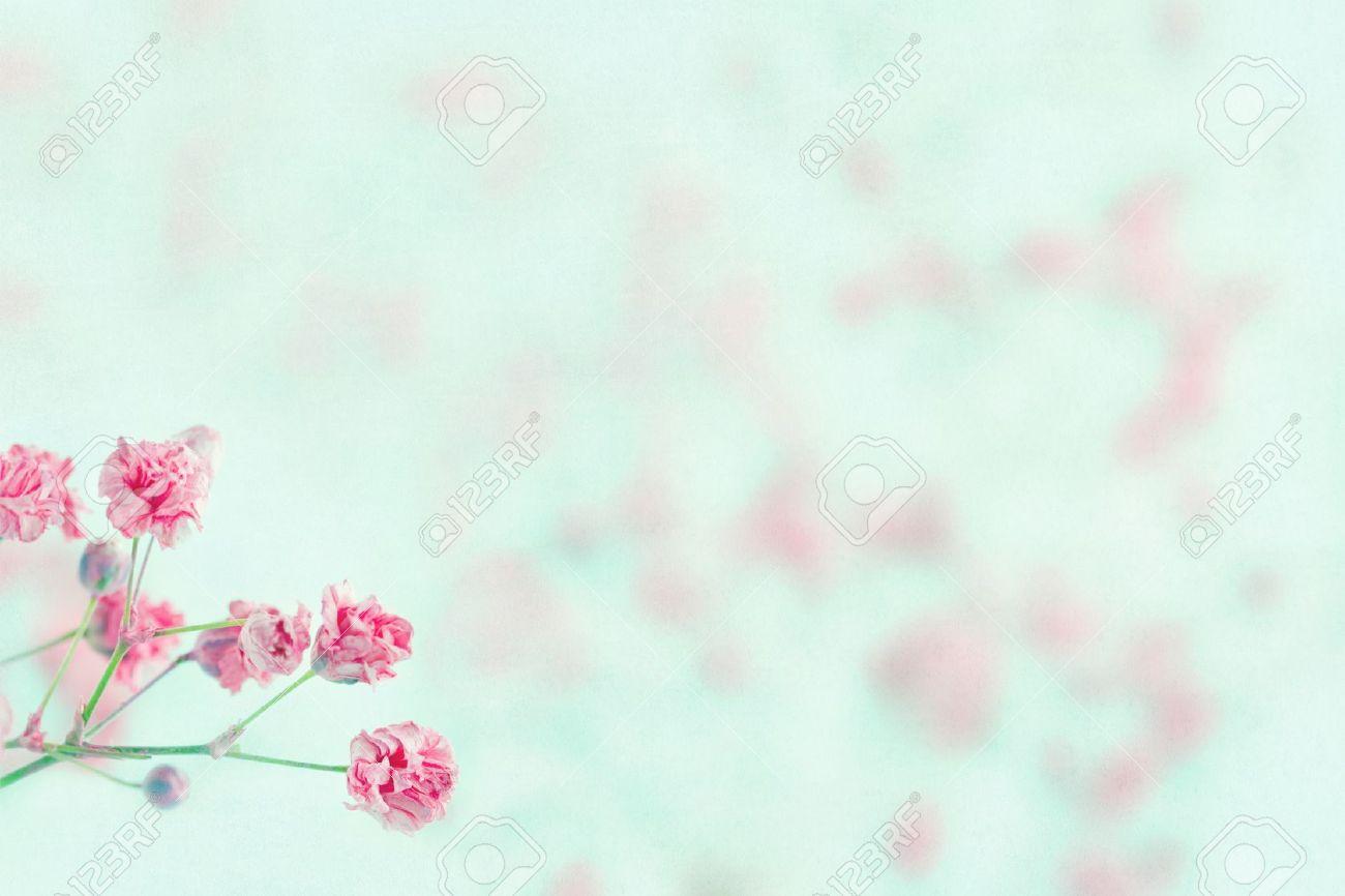 Aliento De Las Flores Color De Rosa De Bebé En Luz Azul Pastel