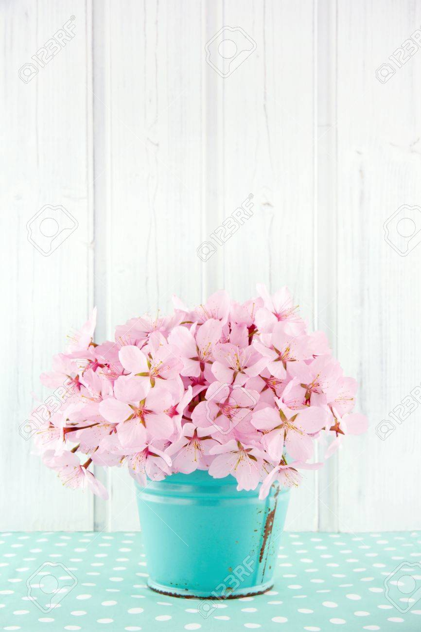 Pink Cherry Blossom Flower Bouquet On Light Blue Vintage And.. Stock ...