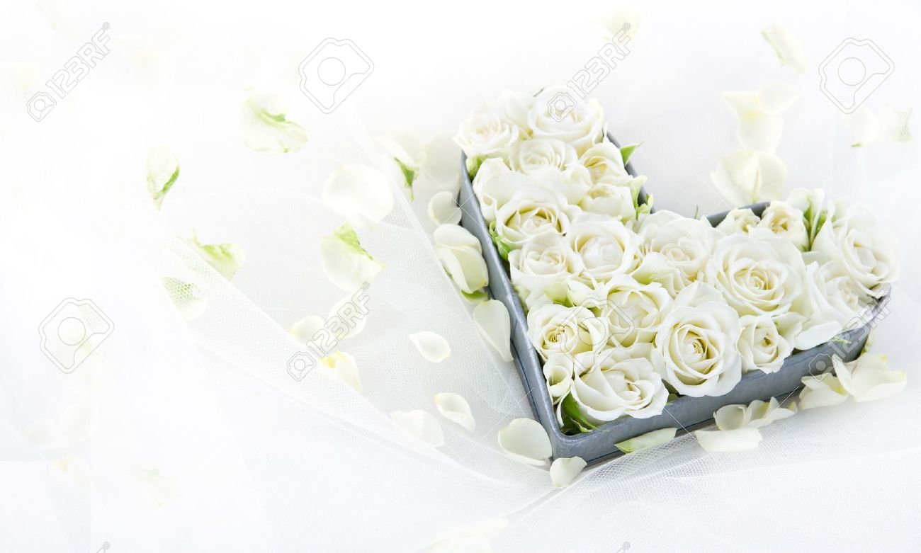 White Wedding Roses In An Old Vintage Metal Heart Shaped Tray Stock Photo Picture And Royalty Free Image Image 19979084