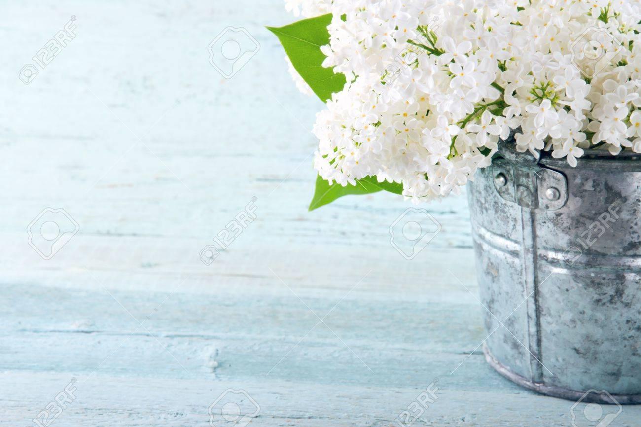 Immagini Stock Bouquet Di Lillà Bianchi Fiori Di Primavera In Un