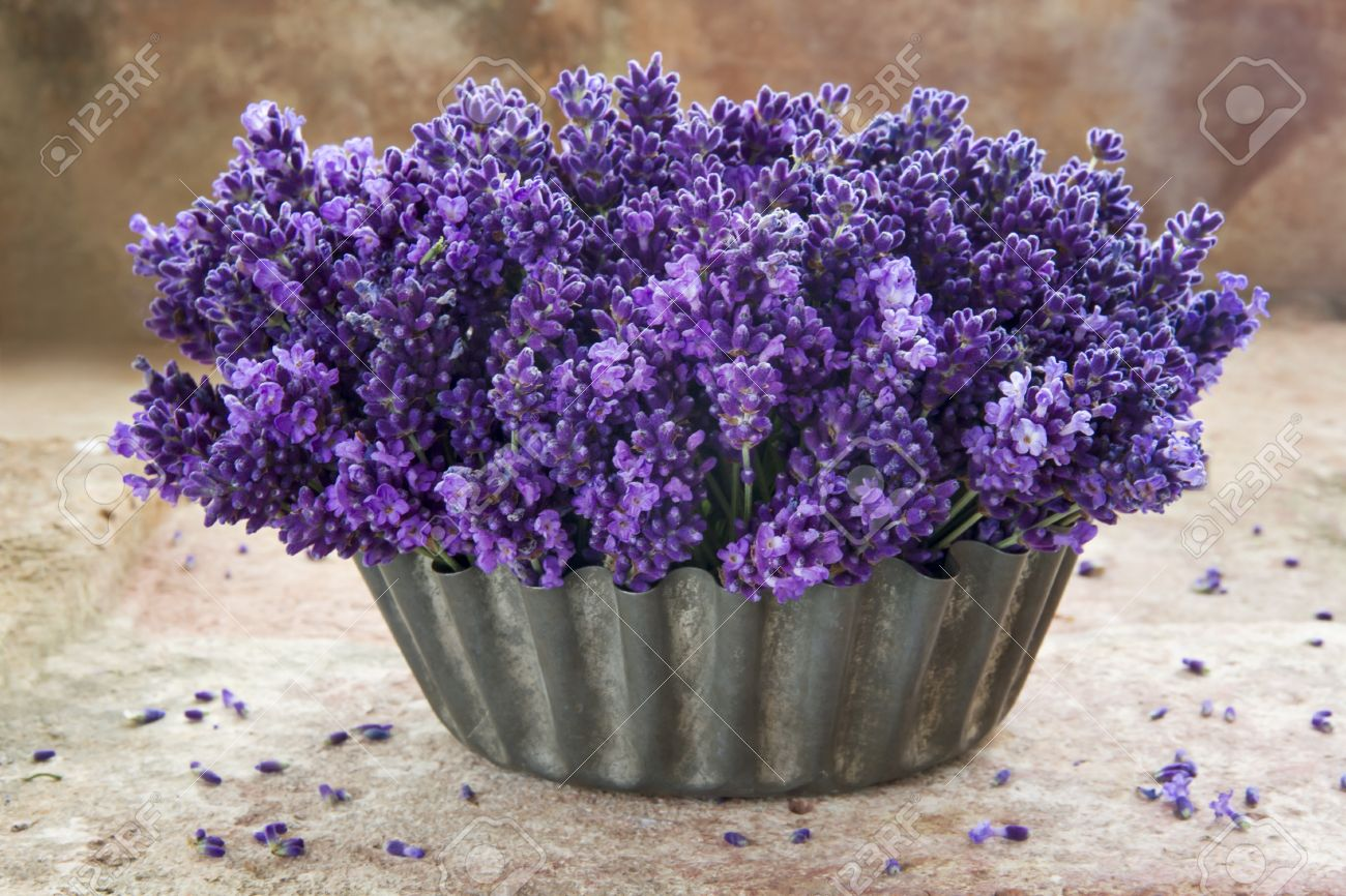 Fresh Bouquet Of Lavender Flowers In A Metal Vase On Rustic ...