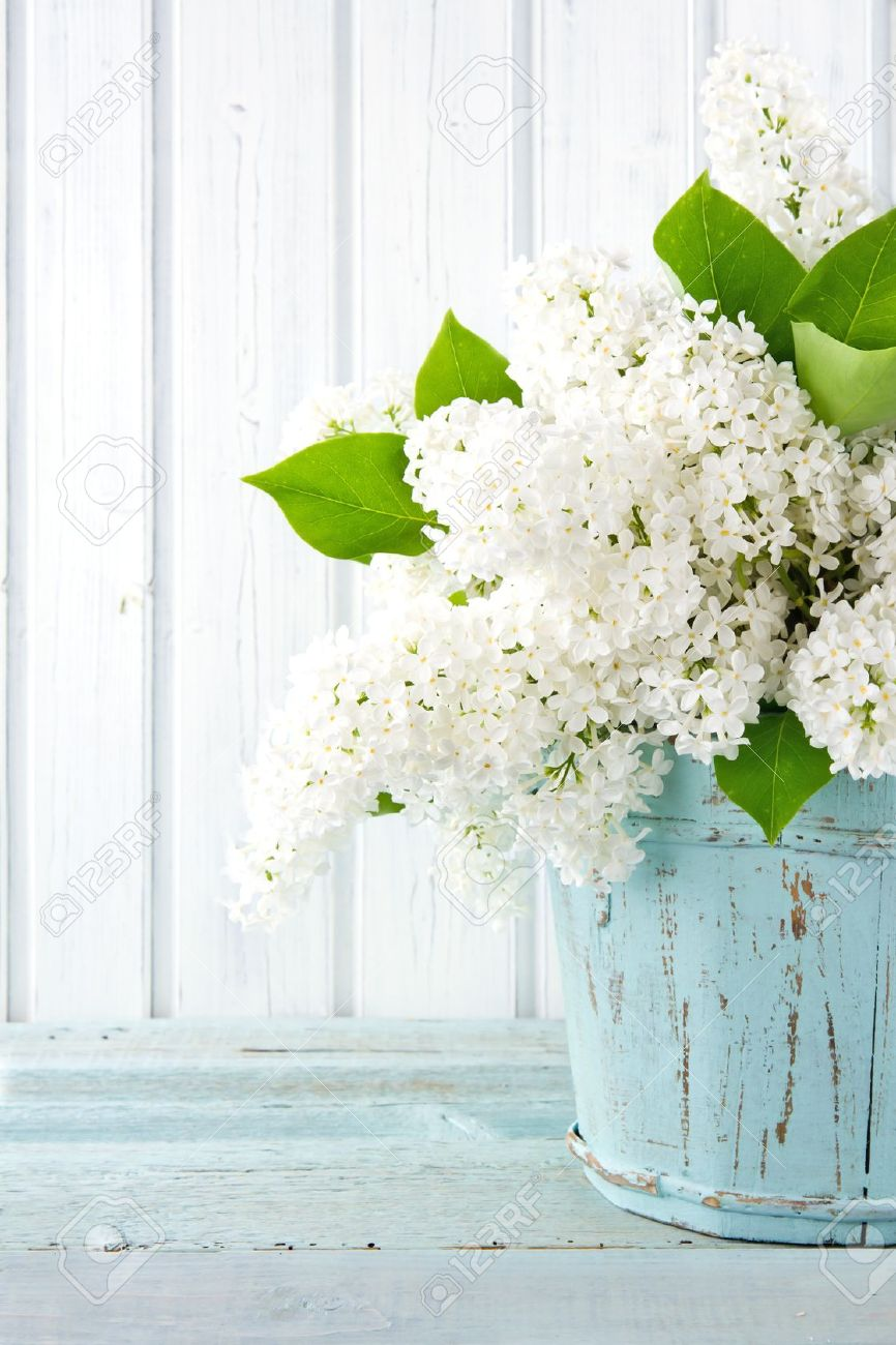 Bouquet of white lilac spring flowers in a wooden blue vase on bouquet of white lilac spring flowers in a wooden blue vase on light shabby chic background mightylinksfo