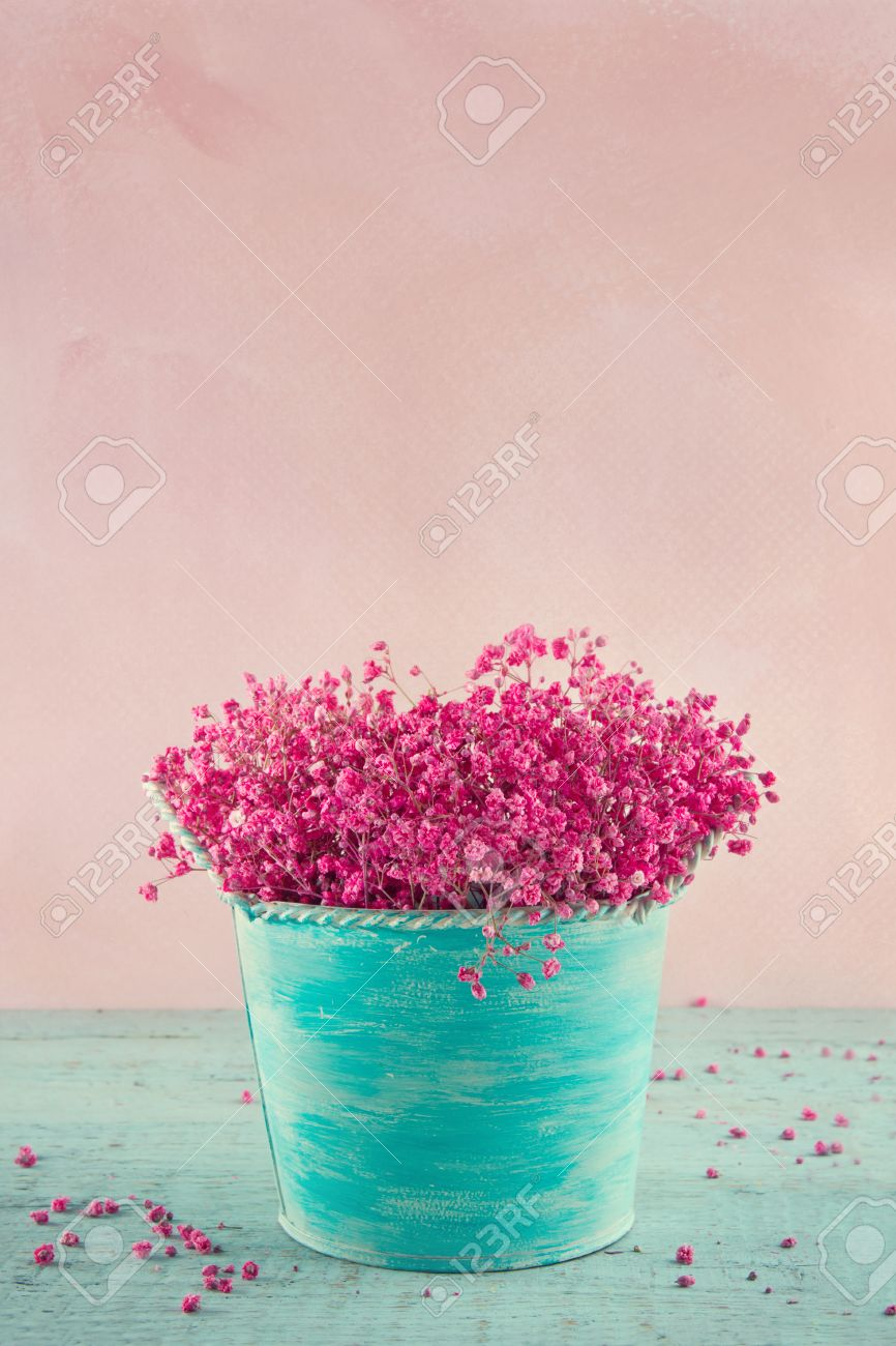Pink dried babys breath flowers in a blue vase on wooden vintage pink dried babys breath flowers in a blue vase on wooden vintage background stock photo mightylinksfo