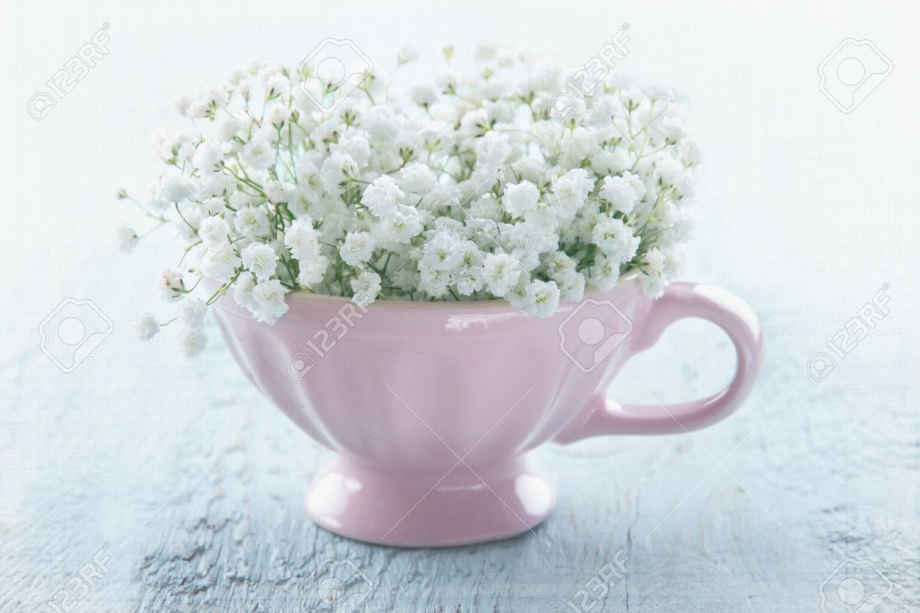 white baby s breath flowers in a pink cup on light blue wooden
