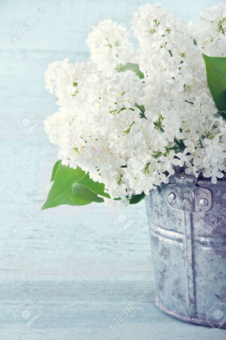 bouquet of white lilac flowers in a vase on vintage shabby chic