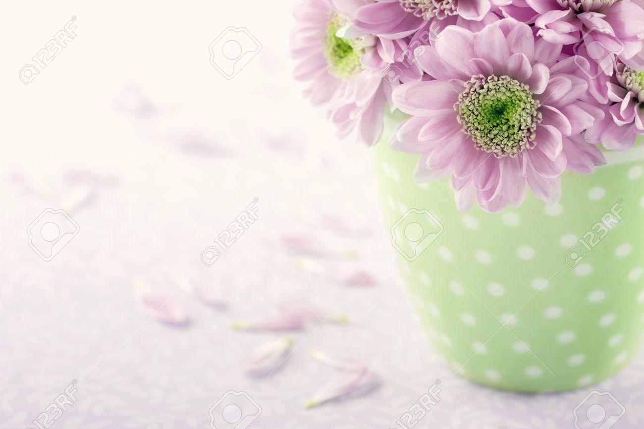 pink chrysanthemum flowers in a green polkadot vase on vintage