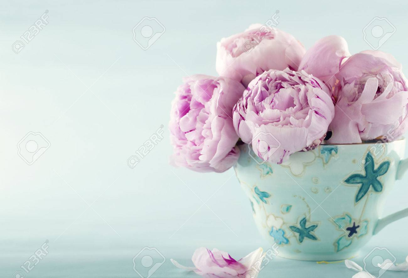 pink peony flowers in a decorative cup on light blue vintage stock