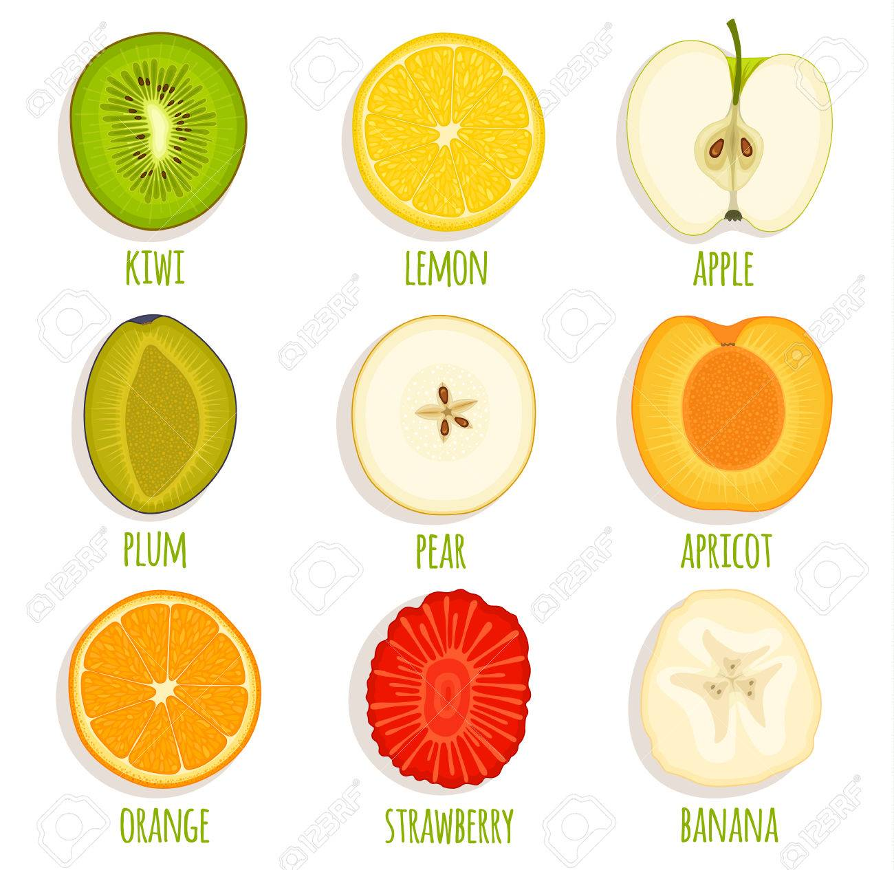 set of sliced fruit vector icon collection of fruit cut in half