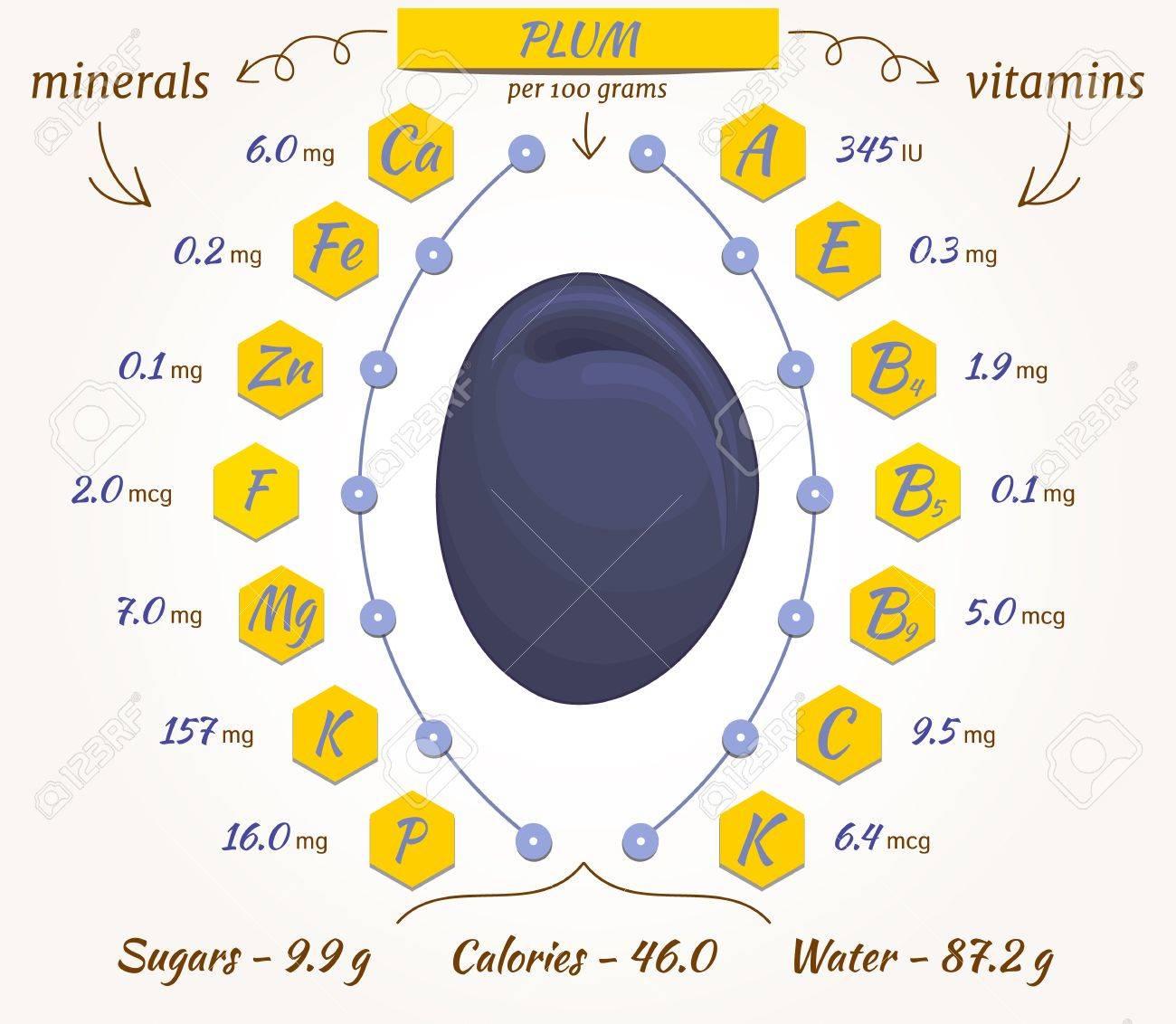 栄養素 プラム