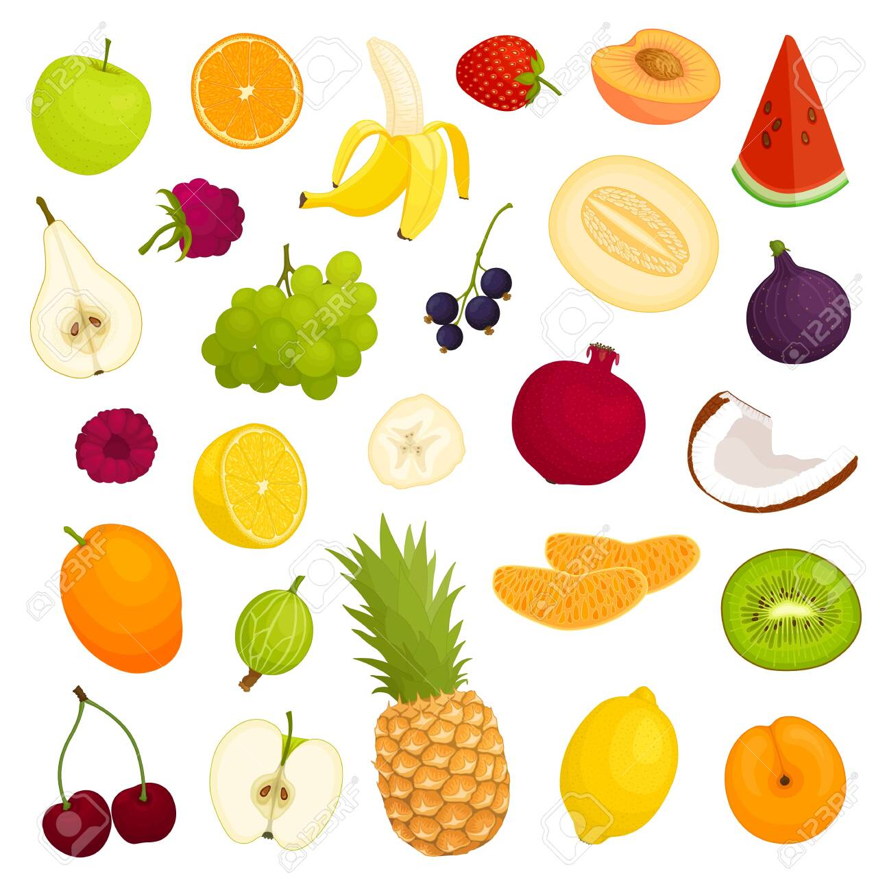 Assorted variety of fresh fruits. Vector illustration. - 131596442