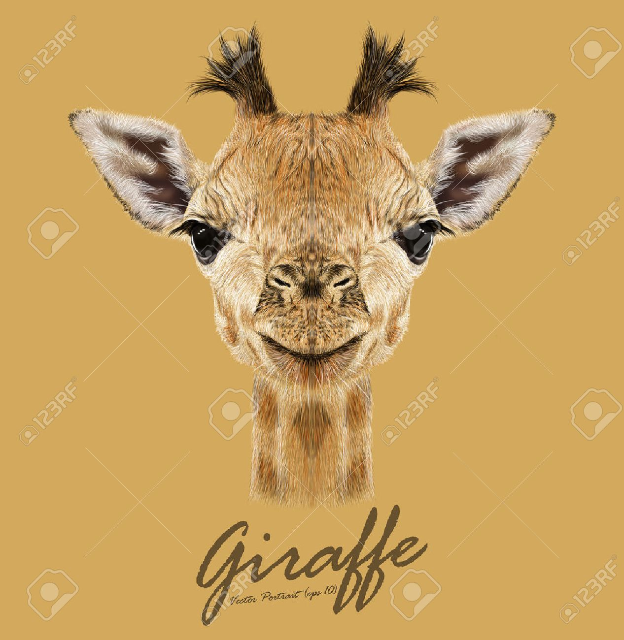 350 727 wild animal stock vector illustration and royalty free