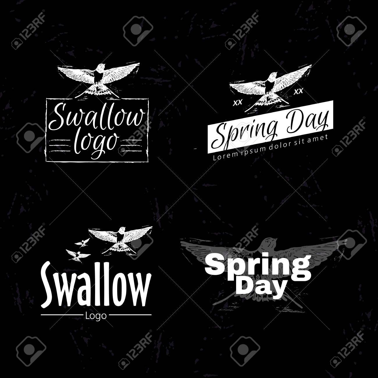 swallow or martlet bird as main element of logotype on black royalty free cliparts vectors and stock illustration image 54946765 123rf com