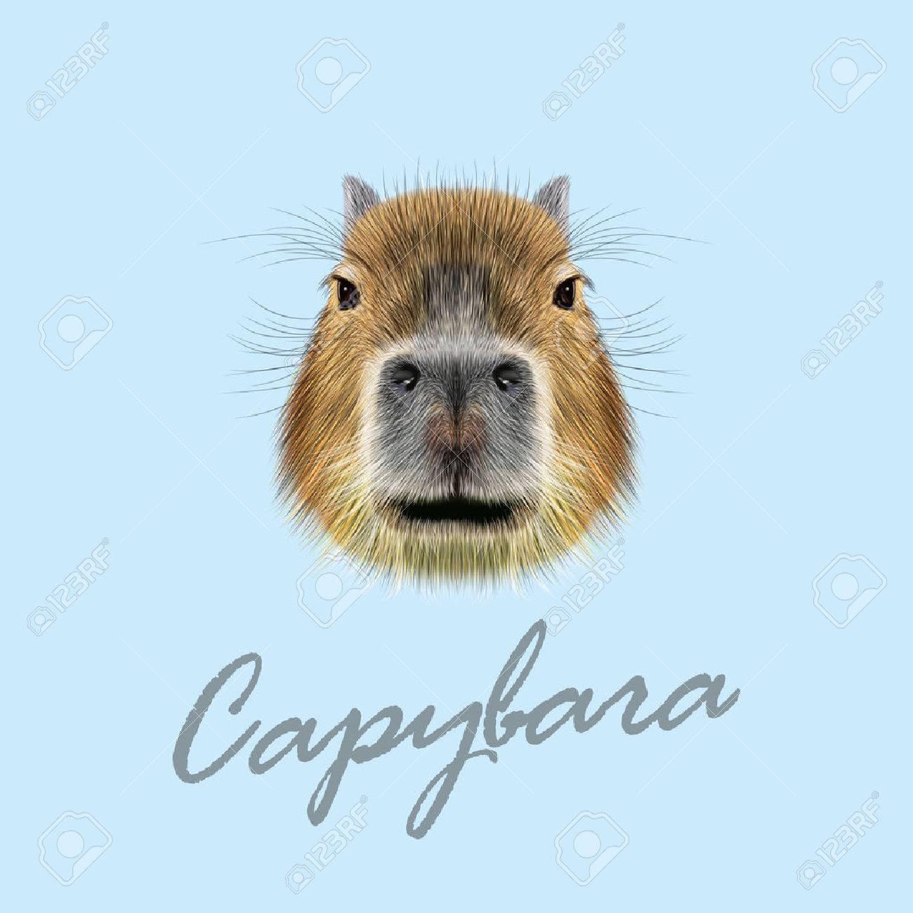 56427776-illustrated-portrait-of-capybar