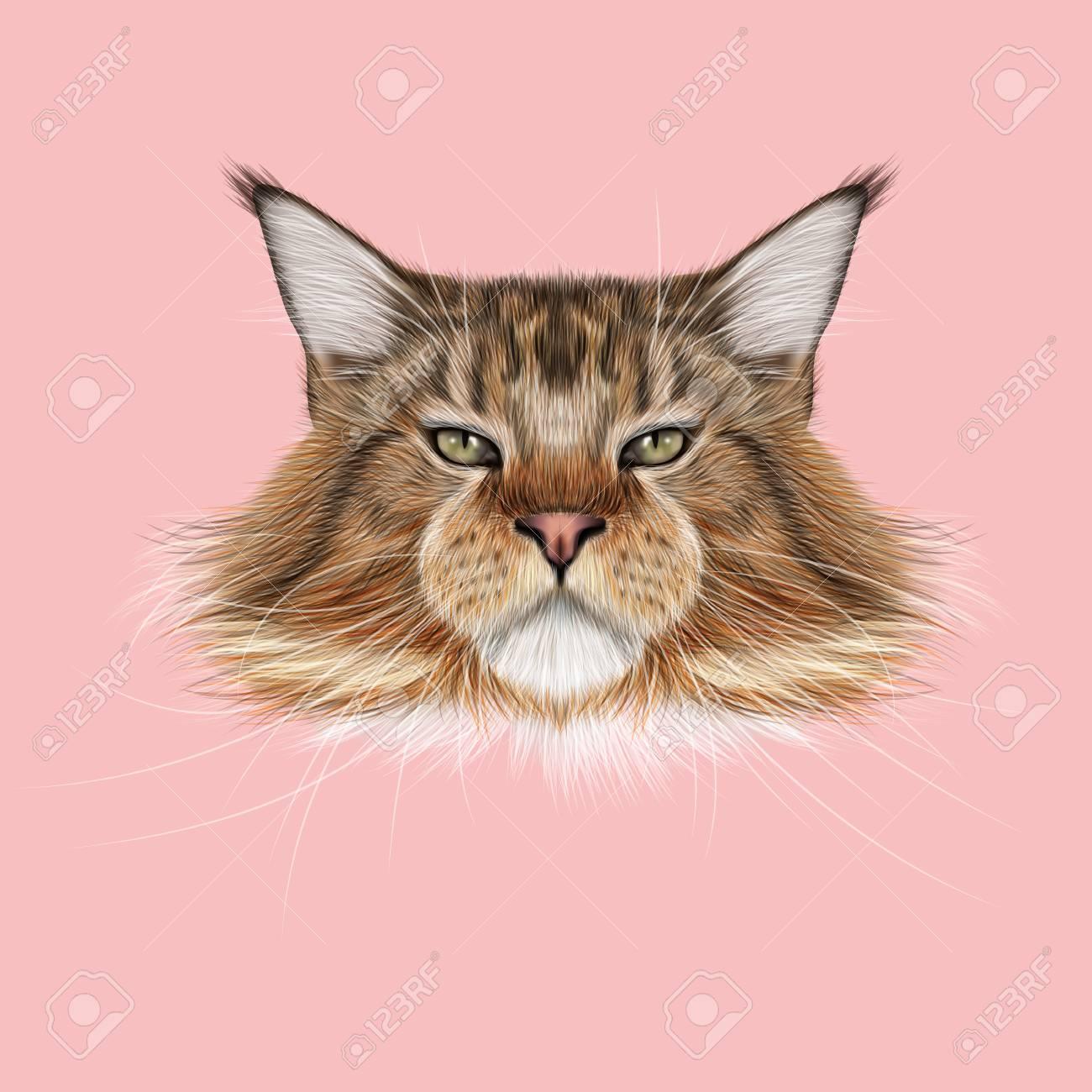 イラスト肖像画のメインあらいくま猫ピンクの背景の国内猫のかわいい