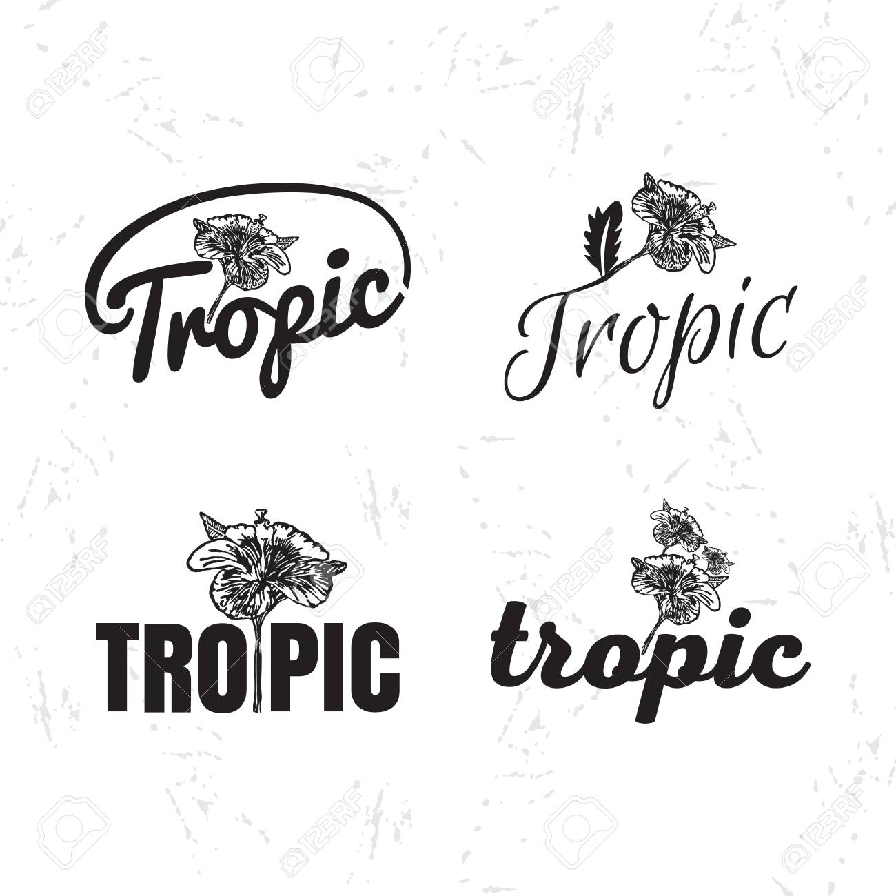 Vector Logo Set With Hibiscus Flower The Tropical Flower As