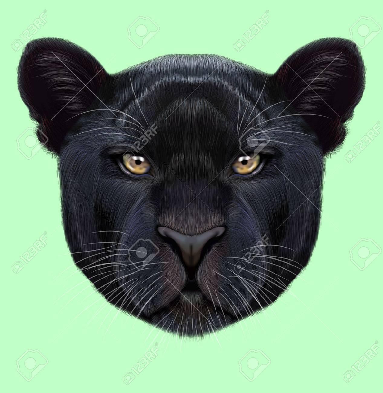 Portrait Illustre De Panthere Noire Visage Moelleux Mignon De Big