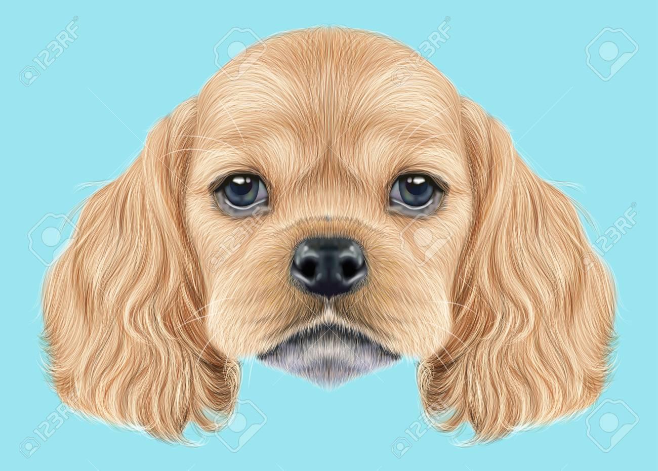illustrated portrait of american cocker spaniel puppy cute fluffy