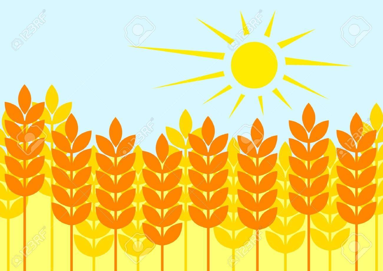 Summer cornfield Stock Vector - 11194717