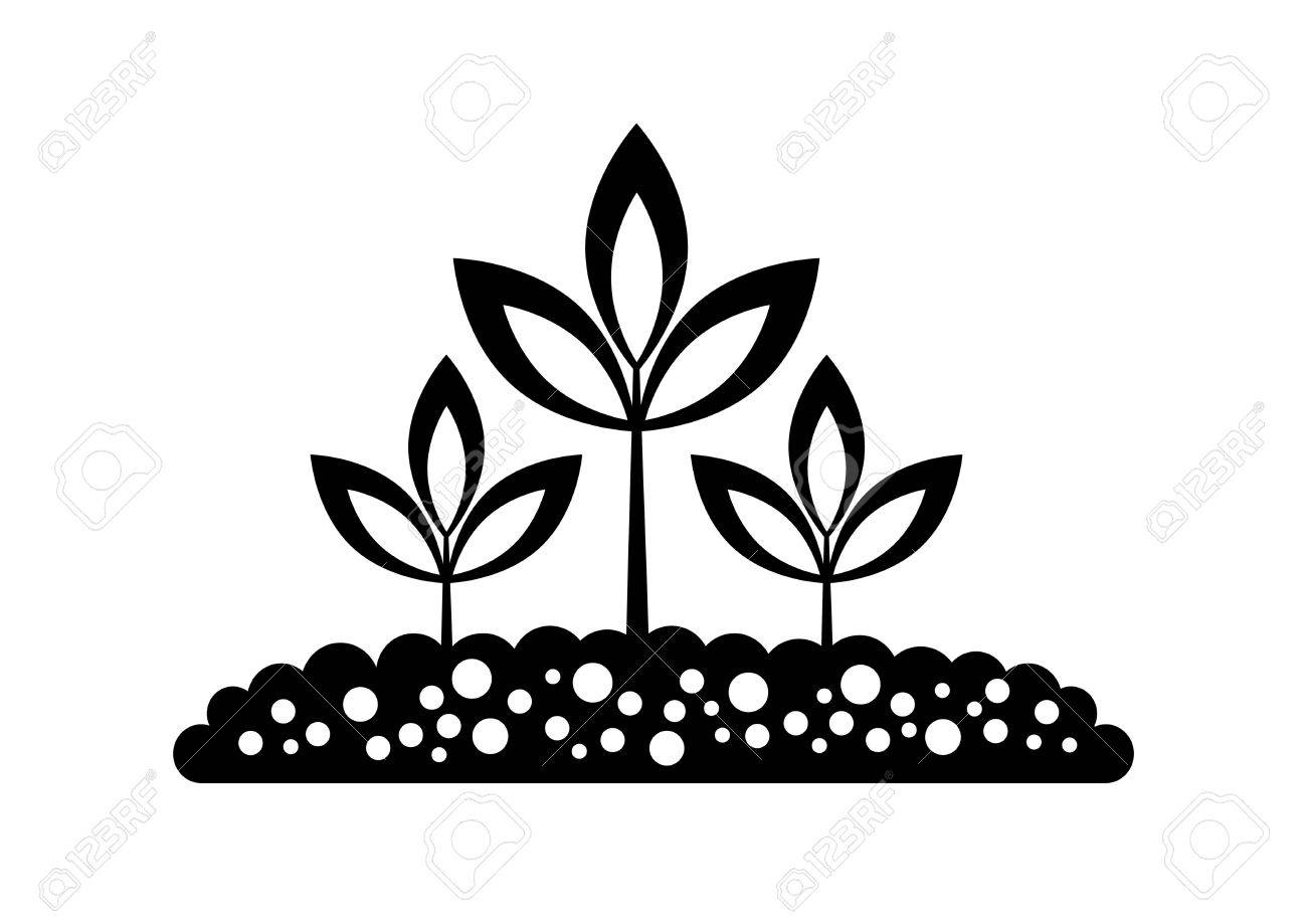 Black Plant Icon Royalty Free Cliparts Vectors And Stock Illustration Image 16666849 Find images of plant icon. black plant icon