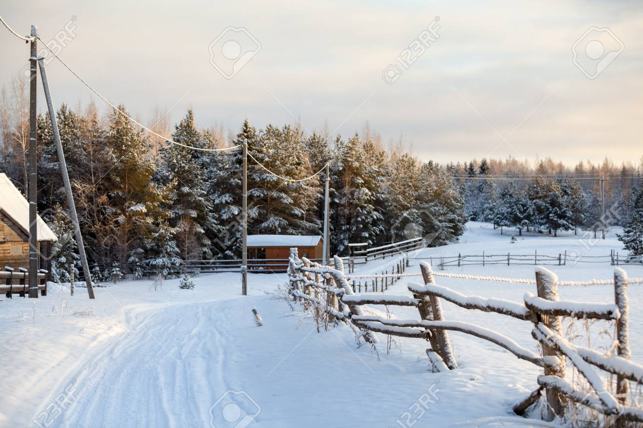 Rural Snow Covered Road With Wooden Fence Along Is In Russian