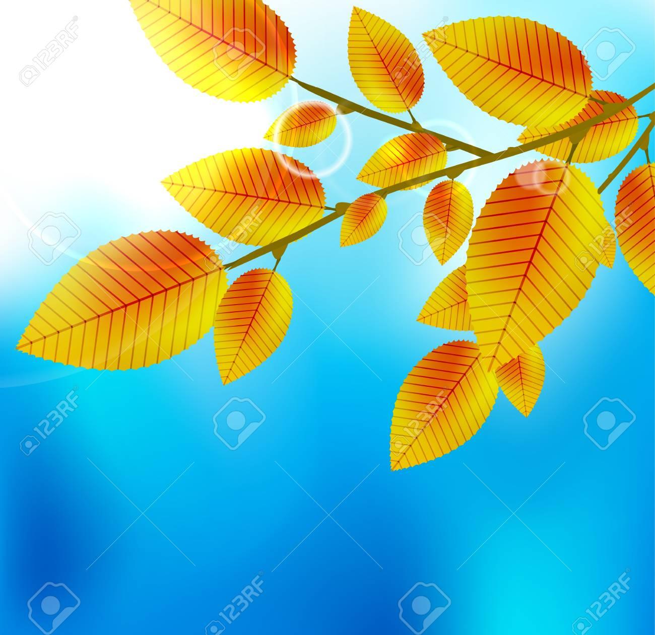 Autumn leaf background Stock Vector - 15430580