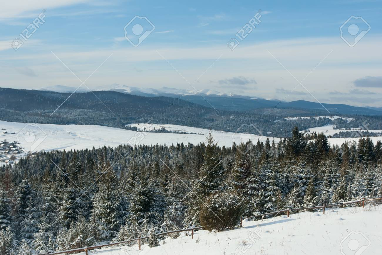 Fir trees covered with snow on a winter mountains and blue sky Stock Photo - 11916173