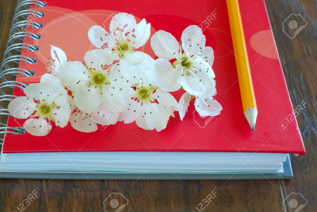 Spring Blossom On Notebook With Pencil Love Message Symbol Lovely Flowers