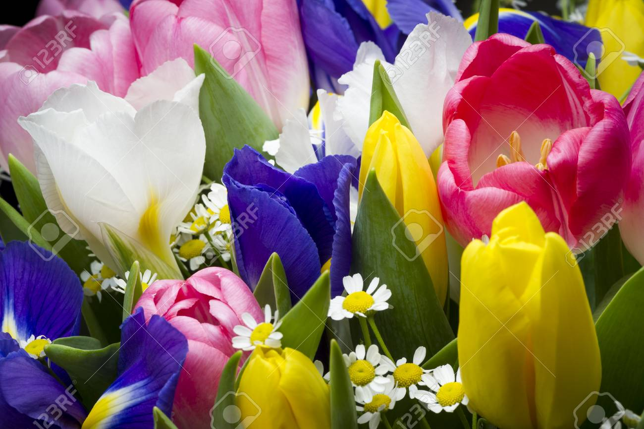 Spring Flowers In Colorful Bouquet Bunch Of Freshly Picked Pink