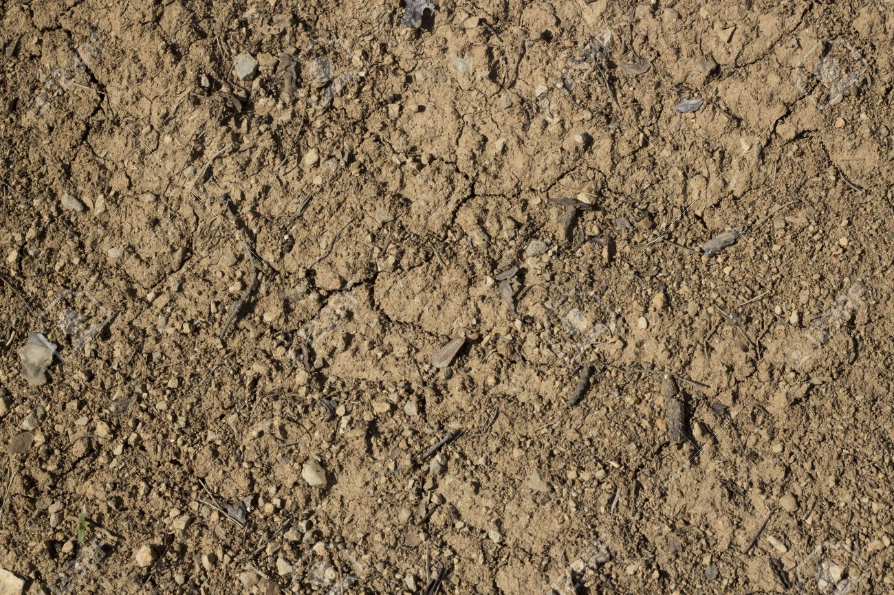 dirt texture seamless. Ground Seamless Texture Stock Photo - 19472258 Dirt