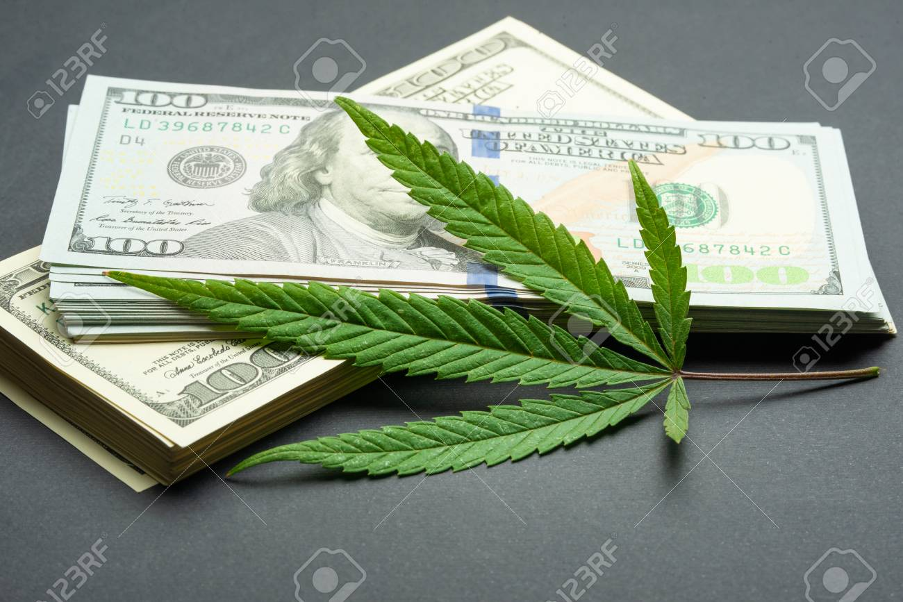 Black market of drugs trade, dollars and cannabis concept photo - 109396039