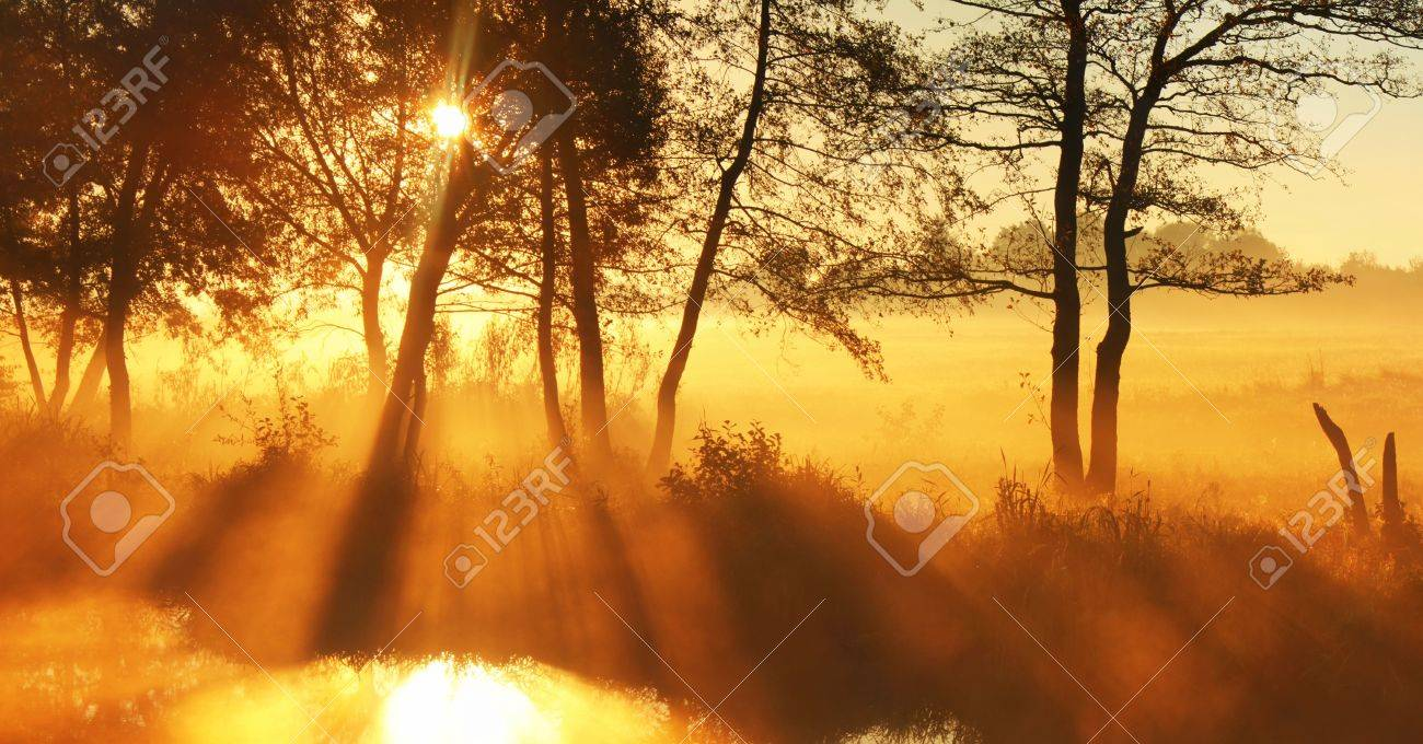 Panorama rays of the rising sun Stock Photo - 12710152