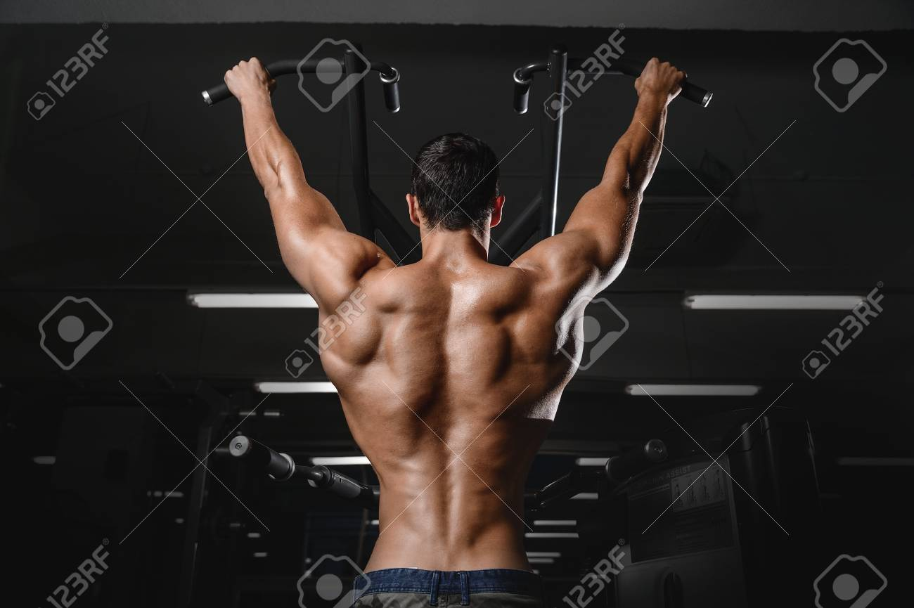 back muscle man s back male bodybuilder flexing his back stock