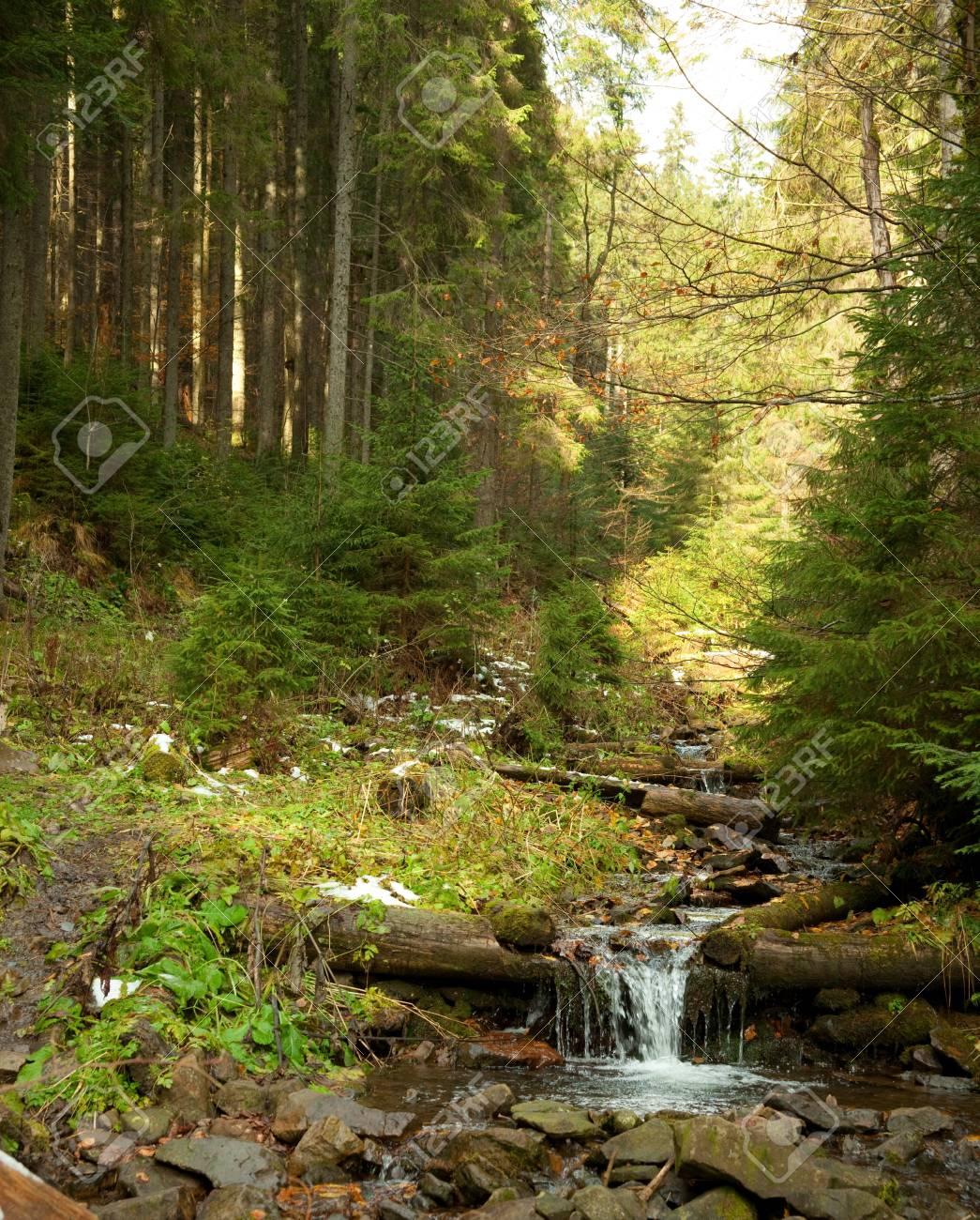 Woodland Stream  A fast flowing stream running through woodland Stock Photo - 15556265
