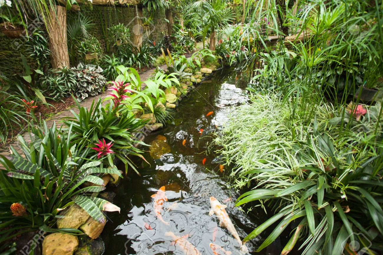 Tropical garden landscape stock photo picture and royalty free stock photo tropical garden landscape workwithnaturefo