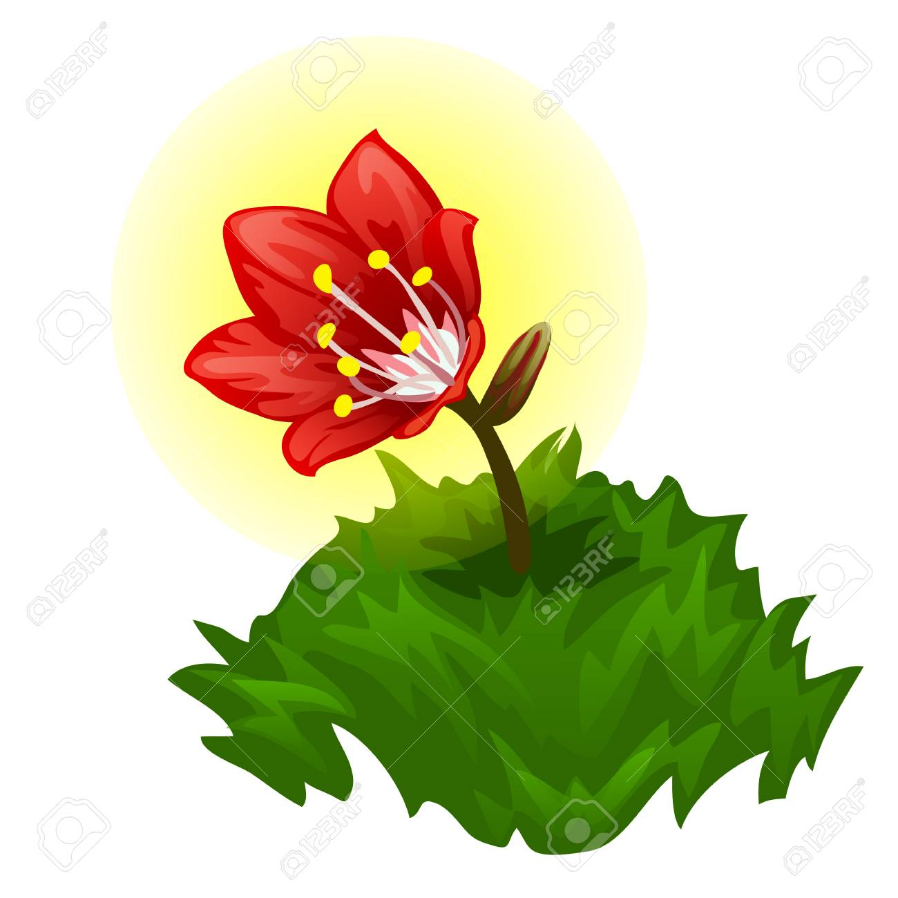 Atractivo Diseños Florales Del Arte Del Uña Bandera - Ideas Para ...