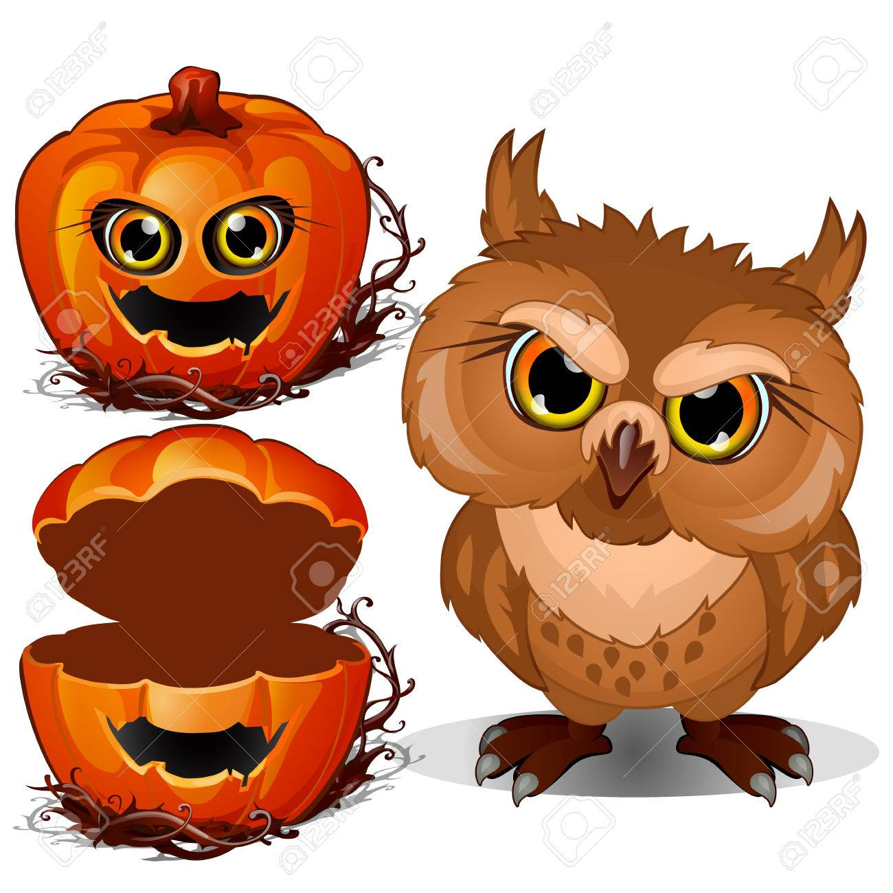 Búho Enojado Y Cara Asustadiza De La Calabaza De Halloween